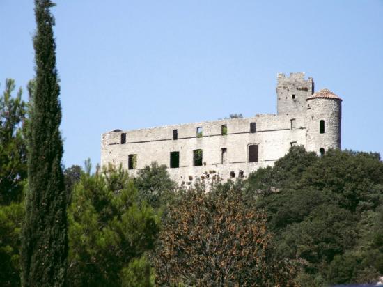 Le chateau de tornac