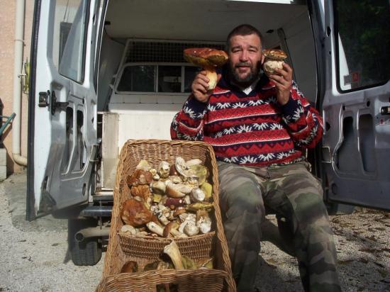Cueillette de cèpes en Cévennes