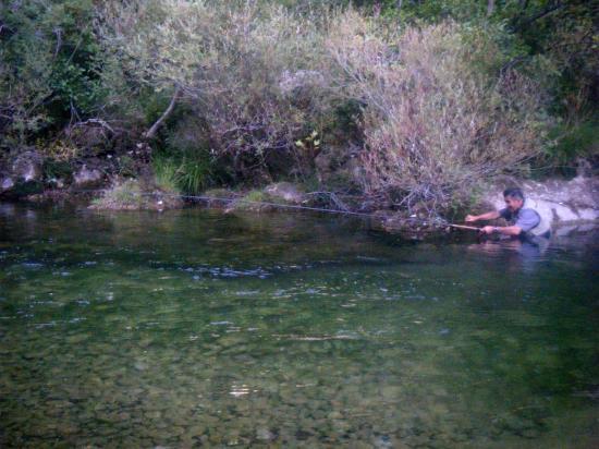 Pêche à la truite fario en Cévennes