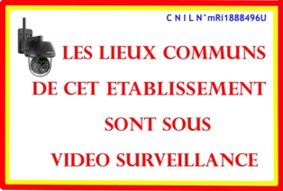 Logo video surveillance 1